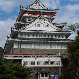 Atami Castle by Greg Varney - Buildings & Architecture Other Exteriors ( red, stairs, japan, white, atami, castle, atami castle, japan-2014, sun,  )