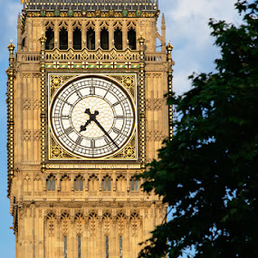 Palace of Westminster Clock Tower by Dunstan Vavasour - Buildings & Architecture Public & Historical ( london, clock tower, westminster, big ben, evening,  )