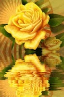 Screenshot of Yellow Rose Reflecting
