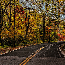 Autumn Drive by Kevin Senter - Transportation Roads ( nature, fall colors, autumn, kevin senter, travel )