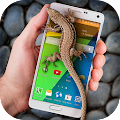 Lizard in phone funny joke APK for Kindle Fire