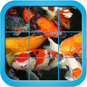 Download fancy koi fish puzzle game apk on pc download for Koi fish games