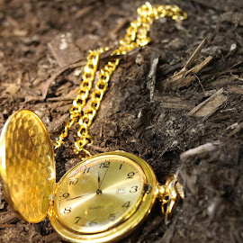 by Aires Spaethe - Artistic Objects Clothing & Accessories ( time, pocket watch, clock, watch, close up, object )