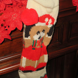 Stockings Were Hung . . . by Marcia Taylor - Novices Only Objects & Still Life (  )