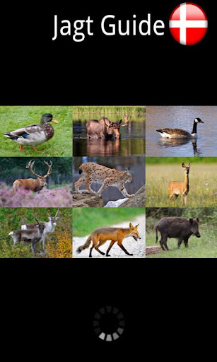 Jagt Guide Danmark