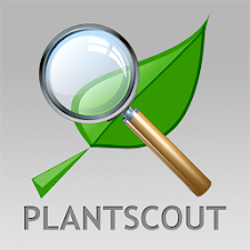 PlantScout