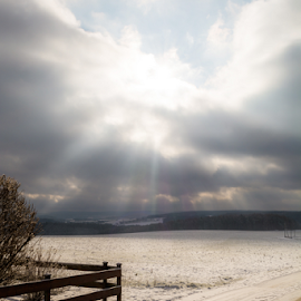 Winter landscape with sun by Denny Gruner - Landscapes Weather ( clouds, heaven, beautiful, dirt road, frost, horizon, landscape, sun rays, sun, field, fence, winter, sky, cold, nature, season, snow, cloudy, sunshine, shade )