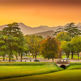 Dusk in Lucca by Terry Hanna - City,  Street & Park  Vistas ( mountains, tuscany, grass, sunset, lucca, trees, dusk, italy )