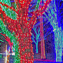 Holiday tree lights by Sharon Kennedy - Abstract Patterns ( holiday lights, garden park, trees, mood, mood factory, holiday, christmas, hanukkah, red, green, lights, artifical, lighting, colors, Kwanzaa, blue, black, celebrate, tis the season, festive )