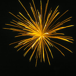 Firework moment by Ananthan Unni - News & Events Entertainment ( firework, fireworks, night, festival, fire )