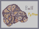Thumbnail of the map 'A ball of a ball python'