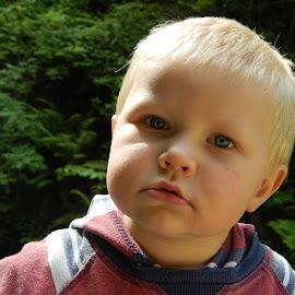 A boy by Ausra A. - Babies & Children Child Portraits ( child, boy, portrait )
