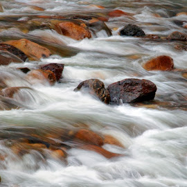 White Water and Rocks by Floyd Hopper - Landscapes Waterscapes ( sierra rivers, merced river, waterscapes, yosemite np, california rivers )