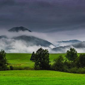 Alps by Ralf Harimau Weinand - Landscapes Mountains & Hills ( reit im winkl, 2014, bayern )