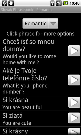 Slovak AUDIO Phrasebook