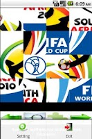 Screenshot of World Cup 2010
