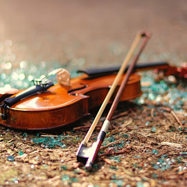 Broken heart by Nizam Akanjee - Artistic Objects Musical Instruments ( music, broken, akanjee, musical instrument, abhisaek, violin, broken glass, bokeh )