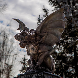 by Kevin Turner - Artistic Objects Still Life ( statue, monster, wings )