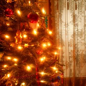 Vintage Christmas by Liz Pascal - Public Holidays Christmas