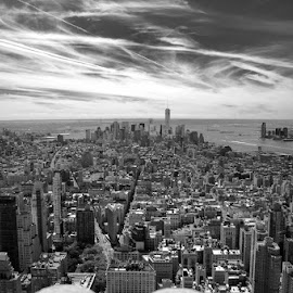 Lower Manhattan by Matt Richardson - City,  Street & Park  Skylines ( skyline, black and white, empire state building, manhattan, nyc )