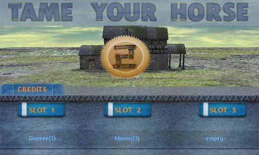 Tame your horse,pony & donkey - screenshot