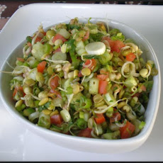 Indian Sprouted Lentil Salad