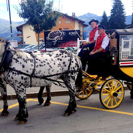 Vintage by Claude Huguenin - Transportation Other ( mountains, carriage, vintage, horse, street photography )