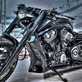 My Road Warrior by Braggart Reigh - Transportation Motorcycles ( motorcycles, bikes, transportation, roads )