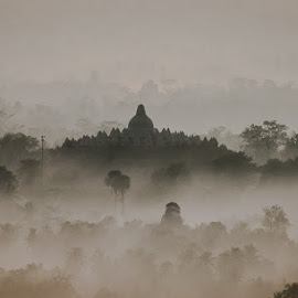Borobudur Temple by Agustian Harun - Buildings & Architecture Statues & Monuments ( temple, central java, black and white, fog, indonesia, magelang, borobudur )