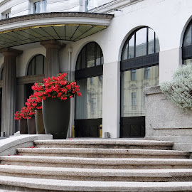 the hotel entrance by Dubravka Penzić - Buildings & Architecture Architectural Detail