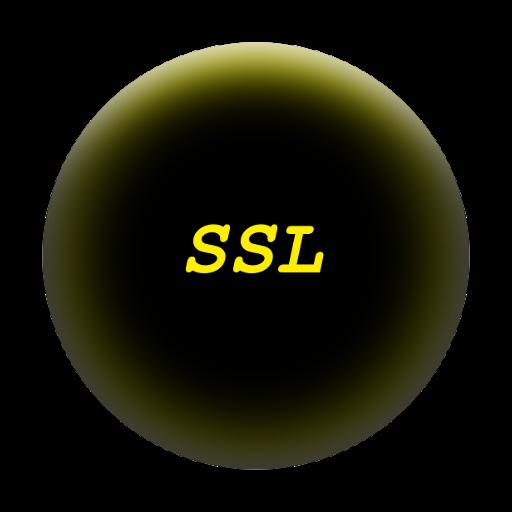 SandroB SSL example LOGO-APP點子