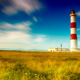 Tarbatness Light house by Kelly Rhind - Landscapes Travel ( clouds, hills, scotland, grass, lighthouse, white, meadows, yellow, highlands, tarbatness, red, sky, blue, ross-shire, heather,  )