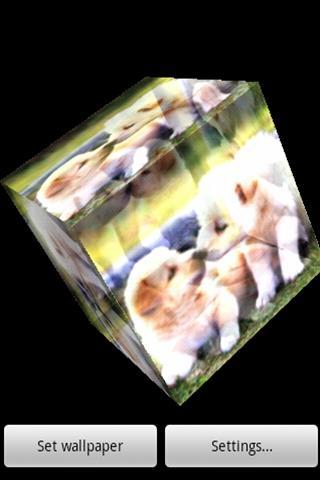 3D かわいい犬35