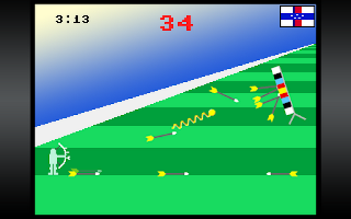 Screenshot of Realistic Summer Sports