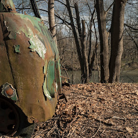 Truck along the Brandywine by David Stone - Transportation Other ( rusty truck, truck, brandywine river, leaves )