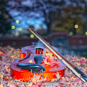 Violin by Nyoman Sundra - Artistic Objects Musical Instruments ( park, violin, autumn, tokyo, leaves )
