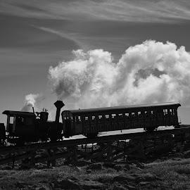 Chug-Chug-Chug-Chug. by Roy Walter - Transportation Trains ( steam locomotive, black & white, train, cog train, objects, mt. washington )