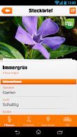 Screenshot of OBI Pflanzenfinder