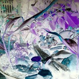 Fairy garden  by Sarah Jayne Ogden - Abstract Fine Art