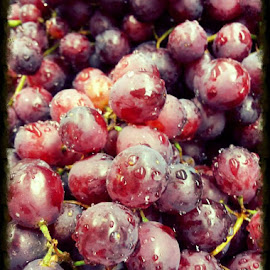 Grapes by Janet Hatfield - Food & Drink Fruits & Vegetables