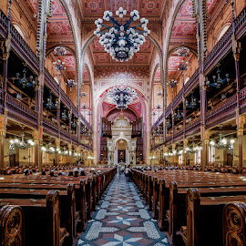 The Dohany Street Synagogue by Matthew Haines - Buildings & Architecture Places of Worship ( budapest, jewish, pews, synagogue )