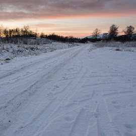 The road by Rune Nilssen - Landscapes Prairies, Meadows & Fields ( k3, winter, ice, snow, pentax, square, road, 6x6, nes )