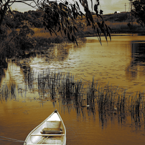 resting boat by Jason Day - Landscapes Waterscapes ( resting, waterscape, boat, photography,  )