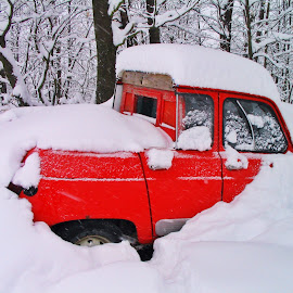 Unger Snow .. by Marco Poli - Transportation Automobiles