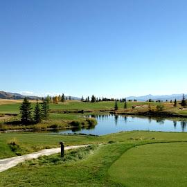 Golf in Teton Village. by Francesca Floris - Landscapes Prairies, Meadows & Fields ( shootingstar, francescafloris, wyoming, golf, tetonvillage, landscape, jacksonhole )
