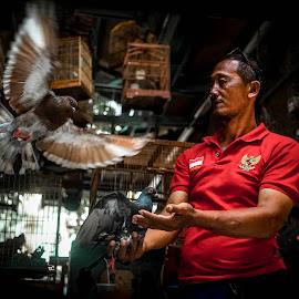 The Dove Man by Markus Gunawan - People Portraits of Men