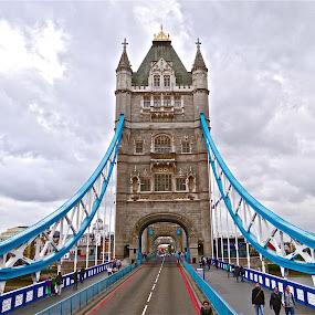 Tower Bridge by Steven Aicinena - Buildings & Architecture Bridges & Suspended Structures ( tower bridge, , bridge )