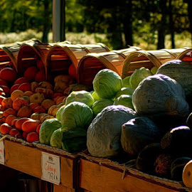 Nature's Home Grown by DeDe PalmerWells - Food & Drink Fruits & Vegetables ( colorful, food, fall, vegetables, squash )
