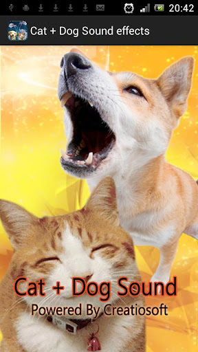 Cat + Dog Sound effects