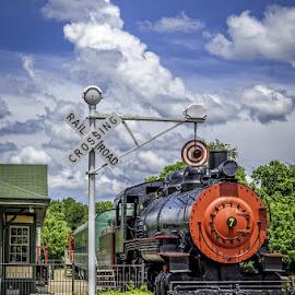 by Gary McDaniel - Transportation Trains